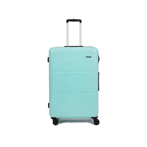 SKY 28in TRAVELBAG (MINT)